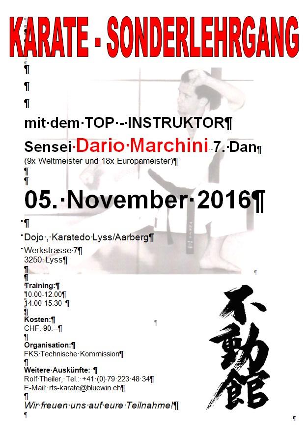 1980 entwickelter karatestil